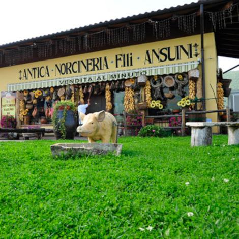 Antica Norcineria F.lli Ansuini 1