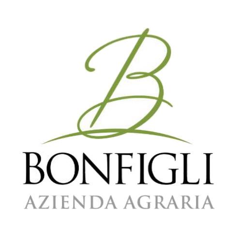 Bonfigli 0