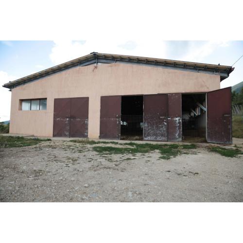 Azienda Agricola De Carolis 0