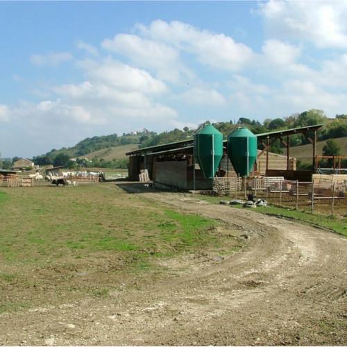 Azienda Agricola Scibè Doriano 1