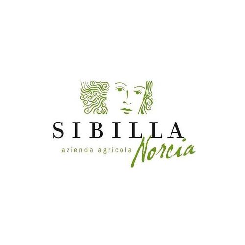 Azienda Agricola Sibilla 1