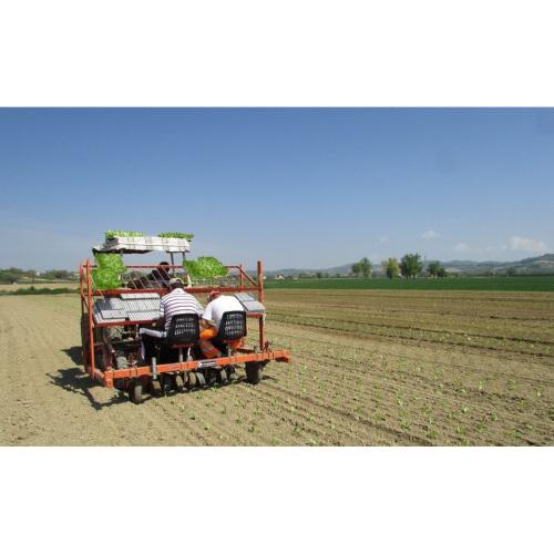 Società Agricola Il poggiolo 1