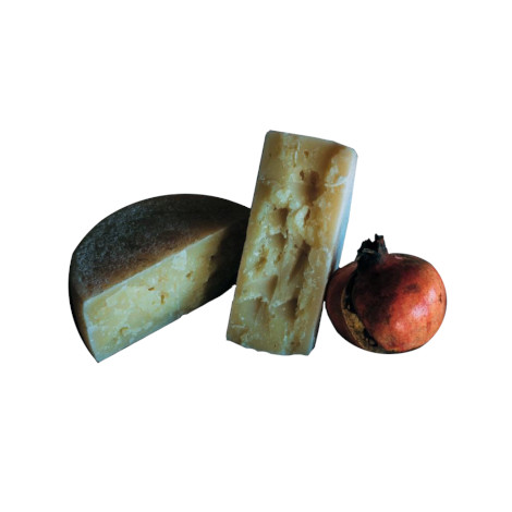 Medium-aged pecorino cheese