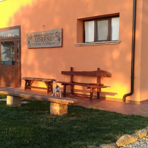 Il Lorese Azienda Agricola 1
