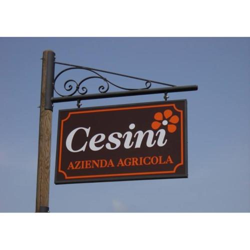 Azienda Agricola Cesini Pierino 1