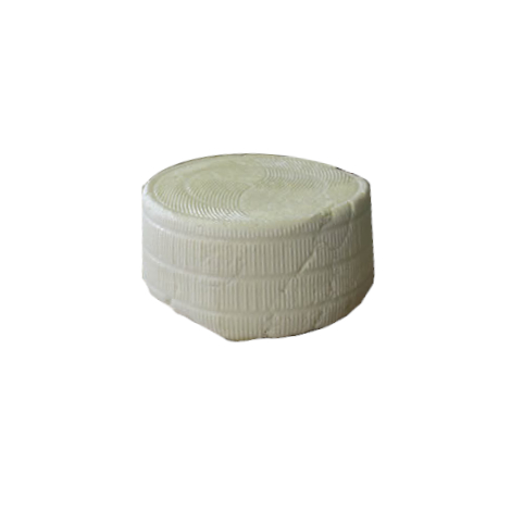Fresh canestrato pecorino cheese
