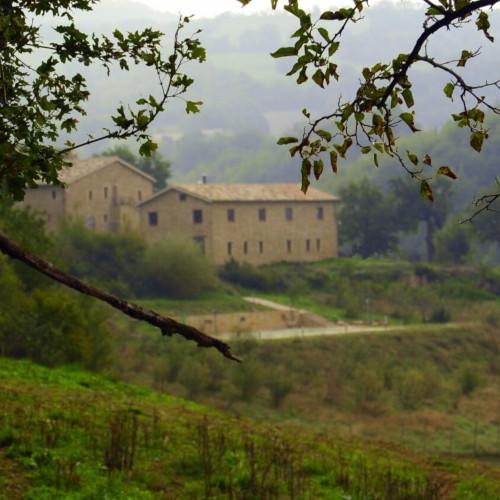 Azienda Agricola Terre della Sibilla