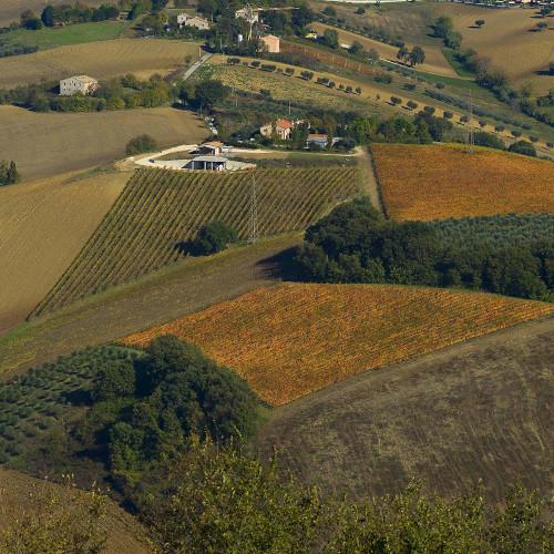 Azienda Agraria La Calcinara 1
