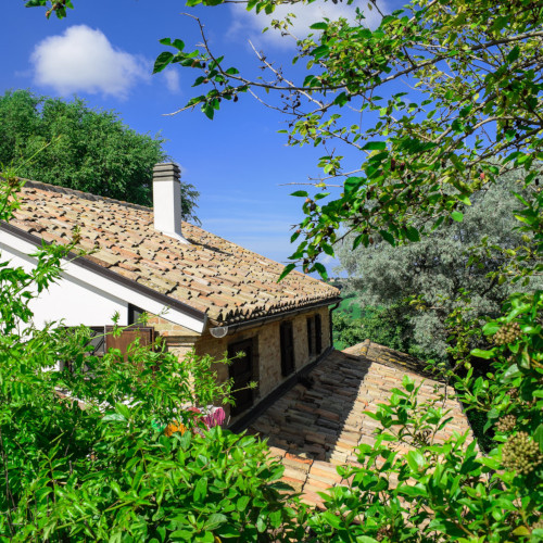 Country House Casale Civetta 1