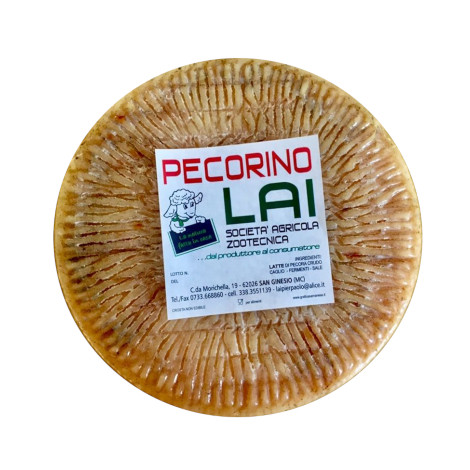 Aged pecorino cheese