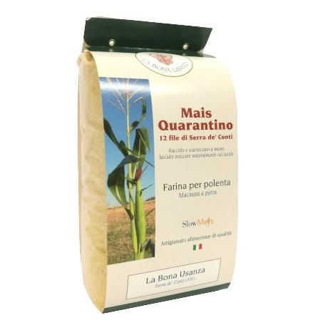 Corn flour Quarantino 1 kg