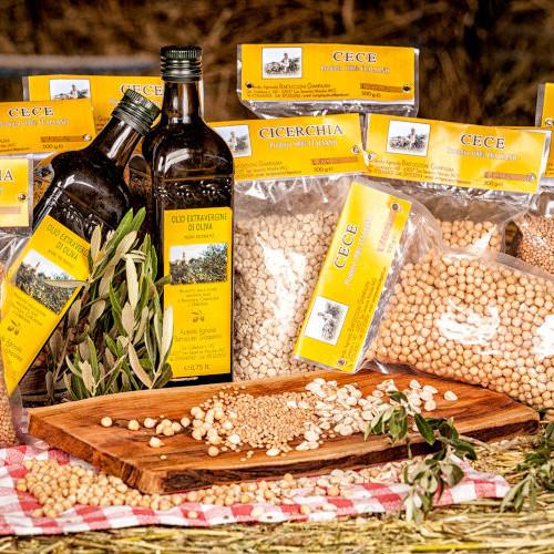 Azienda Agricola Bartoccioni Gian Palma 3